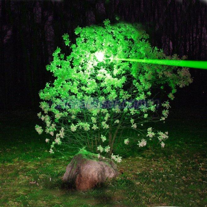 Laser vert 1W